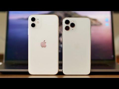 iPhone 11 vs. iPhone eleven Pro: The main variations you should care about
